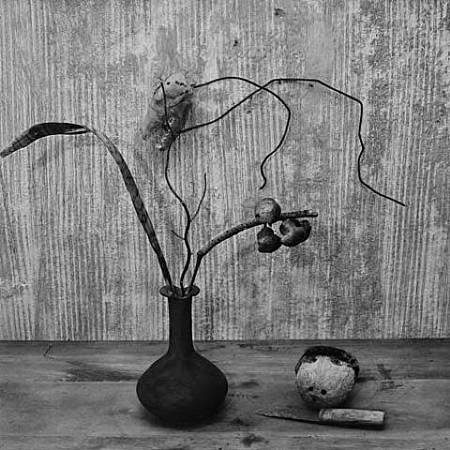 Vase and Skull by Roger Ballen