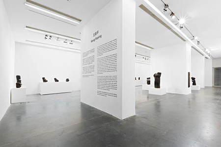 Wang Keping, Installation View