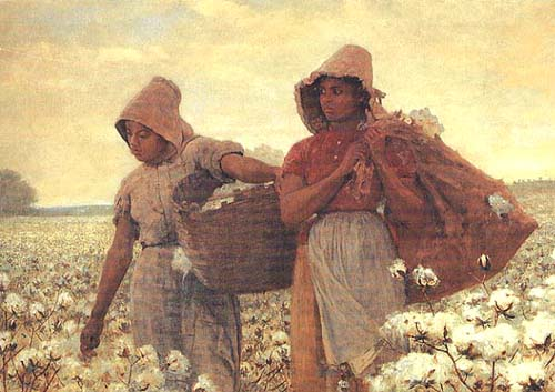 an analysis of cotton pickers The 2016 australian cotton comparative analysis  owns their own pickers, the figure for contract picking will be approximately 50% of the market rate.