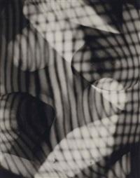 distorted nude in shadow by erwin blumenfeld